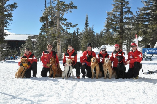 Heavenly Ski Patrol Dogs and their Handlers